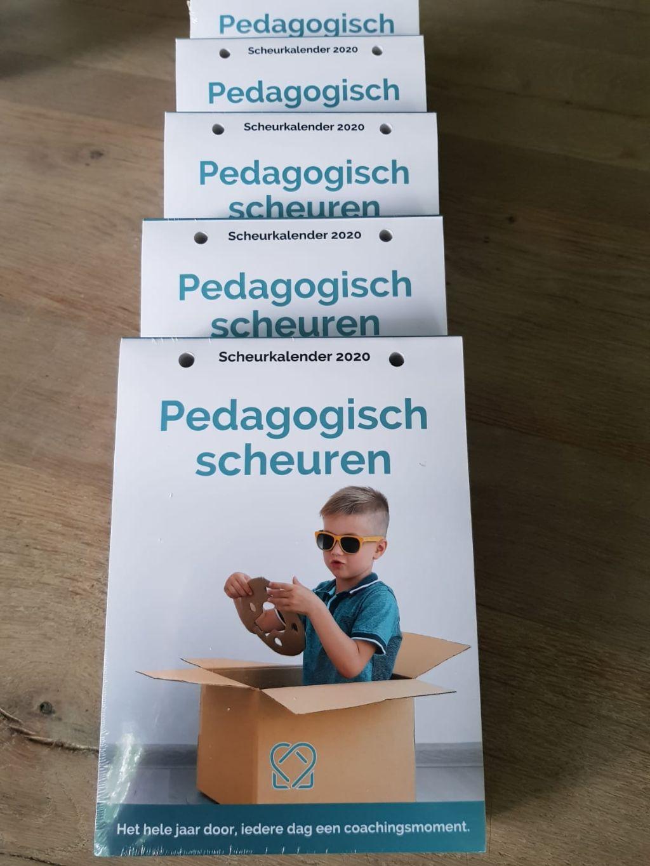 Pedagogisch Scheuren 2020 in de media